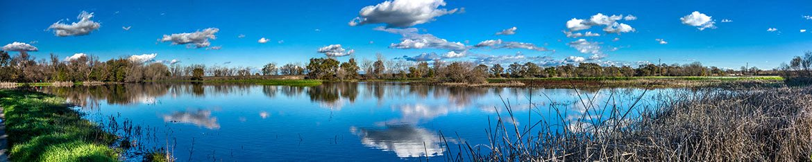 Elk Grove Wetlands to explore at Agave Apartments in Elk Grove CA 95757